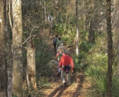 A group of hikers walking up a hill in the woods.