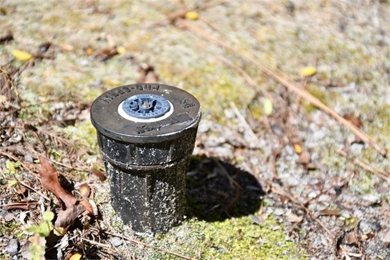 Small sprinkler sorrounded by dirt, moss and leaves.