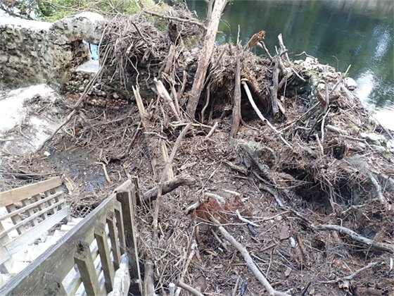 Sediment and debris pile up in a springhouse
