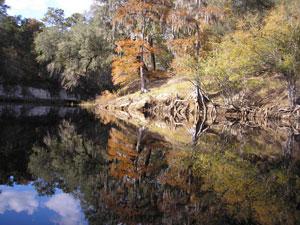 Suwannee River in Fall